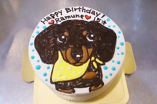【ケーキ制作例まとめ】愛犬の誕生日にぴったりな犬用似顔絵ケーキ♪