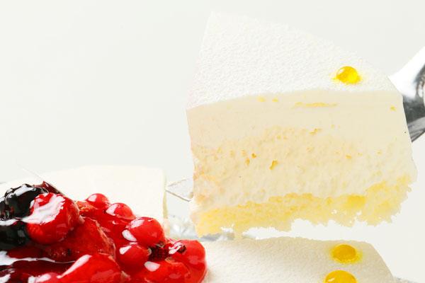 【1日限定2台!】沖縄県産シークァサーのレアチーズケーキ 5号の画像3枚目