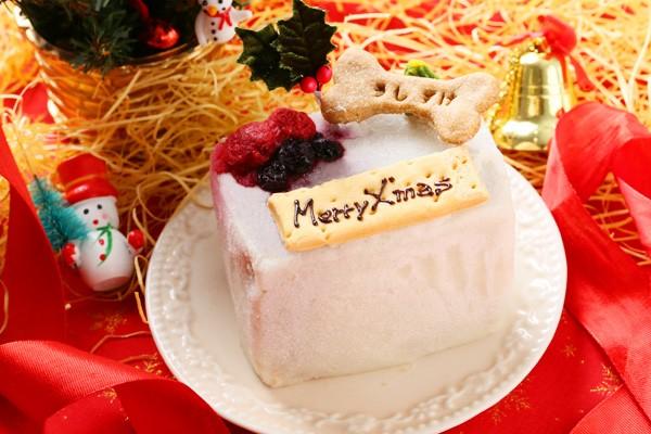 クリスマスケーキ【わんちゃん用】