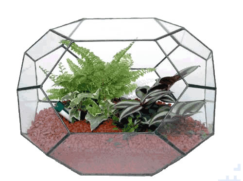 ペンタゴン250【テラリウム 水槽 植木 ステンドグラス】の画像1枚目