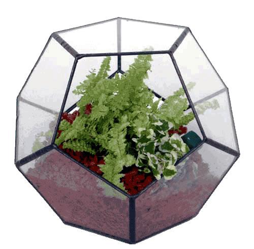 ペンタゴン150【テラリウム 水槽 植木 ステンドグラス】の画像1枚目