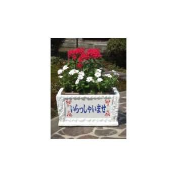 はなはた(角型)広告ステッカー付き【ギフト 贈り物 プレゼント お祝い 店 開店祝い】【花・ガーデン・DIY > ガーデニング > プランター】記念日向けギフトの通販サイト「バースデープレス」