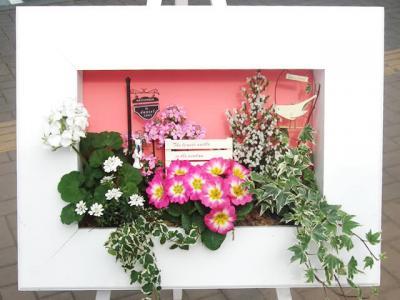 花はなフレーム寄せ植えセット600型【花 フラワーギフト プレゼント お祝い 誕生日 贈り物】
