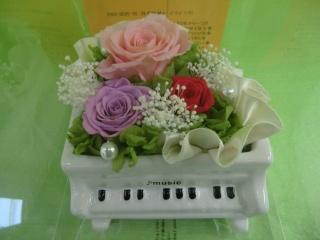 ブリザーブドフラワーグランドピアノ ピンクローズ【花 フラワーギフト プレゼント お祝い 誕生日 贈り物】【花・ガーデン・DIY > フラワー】記念日向けギフトの通販サイト「バースデープレス」