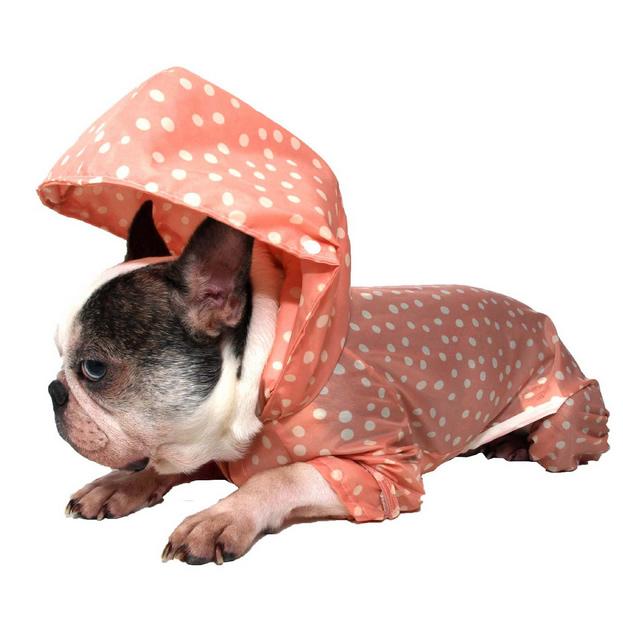 犬専用レインコート