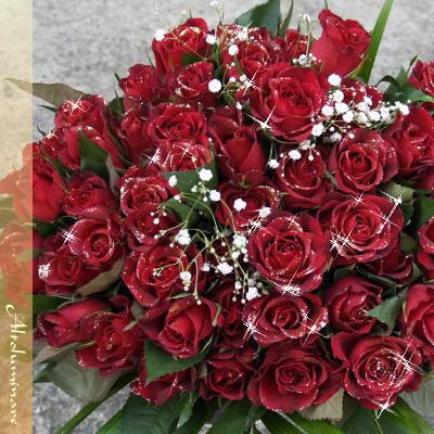 輝くバラ 赤 ディアマンテローゼ 100本のブーケ(花束)