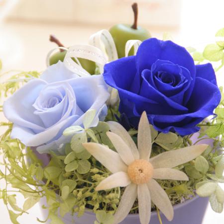 プリザーブドフラワー ギフト Raffine(ラフィネ)【プリザーブド 花 フラワー 誕生日 バースデー プレゼント 贈り物 ギフト お祝い】