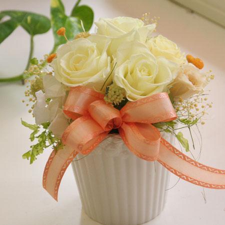プリザーブドフラワー ギフト ハミング【送料無料】【プリザーブドフラワー 花 フラワー 誕生日 バースデー プレゼント 贈り物 ギフト お祝い】