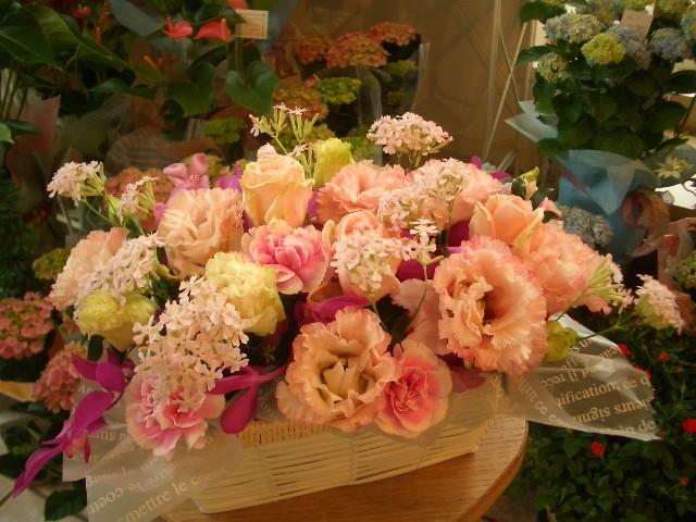 ふあふあピンク【花 アレンジメント フラワー 誕生日 バースデー プレゼント 贈り物 ギフト お祝い】の画像1枚目