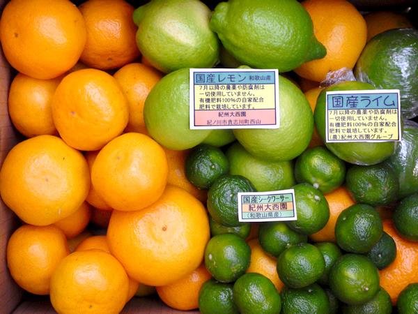 【送料無料】グリーンセット シークワーサー・国産レモン・国産ライム5kgセット【誕生日 バースデー プレゼント 贈り物 ギフト お祝い】の画像1枚目