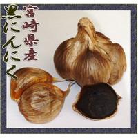 黒ニンニク 宮崎県産::1587【食品】記念日向けギフトの通販サイト「バースデープレス」