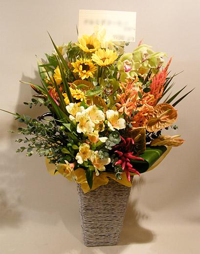【生花】オレンジスタイル【花 フラワー 誕生日 バースデー プレゼント 贈り物 ギフト お祝い】【花・ガーデン・DIY > フラワー】記念日向けギフトの通販サイト「バースデープレス」