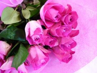 可愛らしいピンくのバラの花束【お花 フラワーギフト 贈り物 お祝い】【花・ガーデン・DIY > フラワー】記念日向けギフトの通販サイト「バースデープレス」