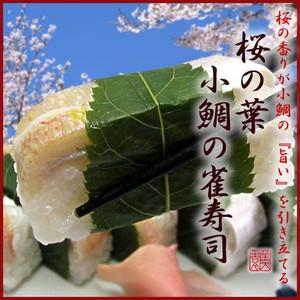桜の葉 小鯛雀寿司 お中元::1762【バッグ・小物・ブランド雑貨】記念日向けギフトの通販サイト「バースデープレス」