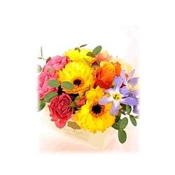 BOXアレンジメント Sサイズ【花 フラワーアレンジメント 贈り物 ギフト 新築・引越し・開店祝い 周年・移転祝い 個展・出展祝い】
