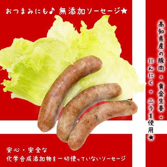 【無添加】 高知県産の豚肉と「黄金生姜・にんにく・ニラ」の無添加ウインナーソーセージ3本入り×10セット::2539【バッグ・小物・ブランド雑貨】記念日向けギフトの通販サイト「バースデープレス」
