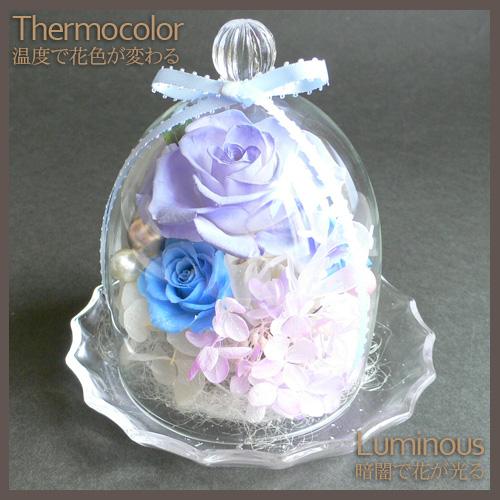 プリザーブドフラワー 温度で色が変わる&光る ガラスドーム(大)[g9]::2783【バッグ・小物・ブランド雑貨】記念日向けギフトの通販サイト「バースデープレス」
