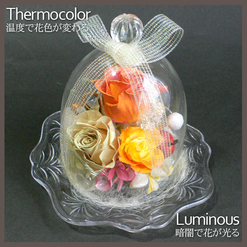 プリザーブドフラワー 温度で色が変わる&光る ガラスドーム(大)[g8]::2783【バッグ・小物・ブランド雑貨】記念日向けギフトの通販サイト「バースデープレス」