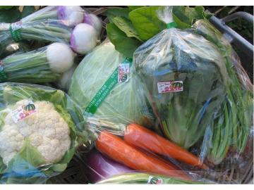 野菜セット(S)::2864【バッグ・小物・ブランド雑貨】記念日向けギフトの通販サイト「バースデープレス」