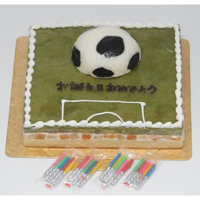 サッカーフィールドケーキ::2904【バッグ・小物・ブランド雑貨】記念日向けギフトの通販サイト「バースデープレス」