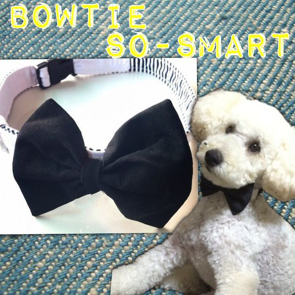 犬 首 蝶ネクタイ ボウタイ モノトーン So-smart(SS/S)::2942【バッグ・小物・ブランド雑貨】記念日向けギフトの通販サイト「バースデープレス」