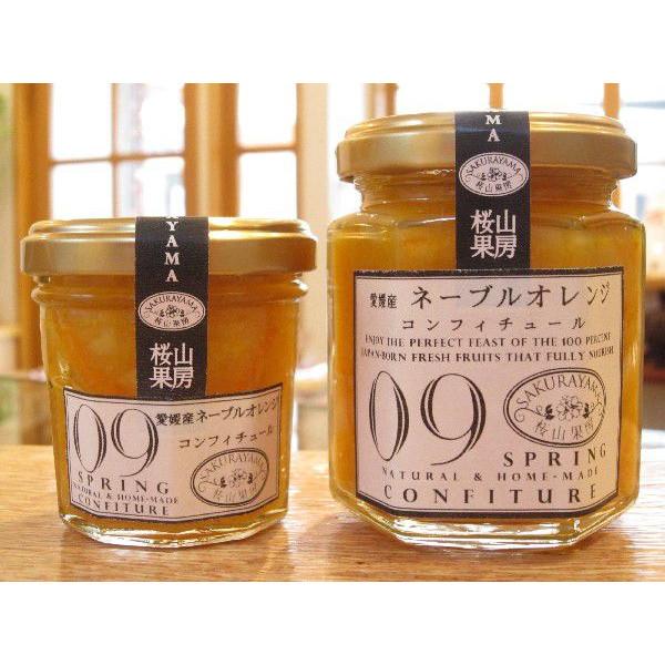 『愛媛産 ネーブルオレンジ』無添加・低糖度のコンフィチュール(ジャム)M::3286【食品】記念日向けギフトの通販サイト「バースデープレス」