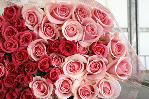 60 本のバラでお祝いを!還暦祝い用バラの花束(ピンク60本)