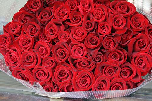 60本のバラでお祝いを!還暦祝い用バラの花束(赤60本)
