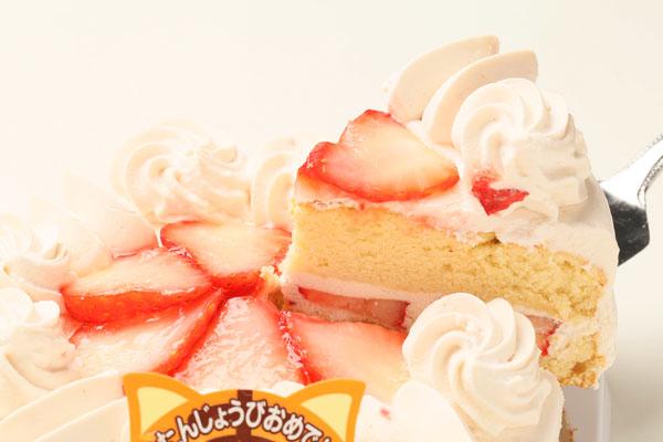 ストロベリー(小麦粉抜き)6号【アレルギー対応 誕生日 アレルギー  デコ バースデー ケーキ バースデーケーキ】の画像3枚目