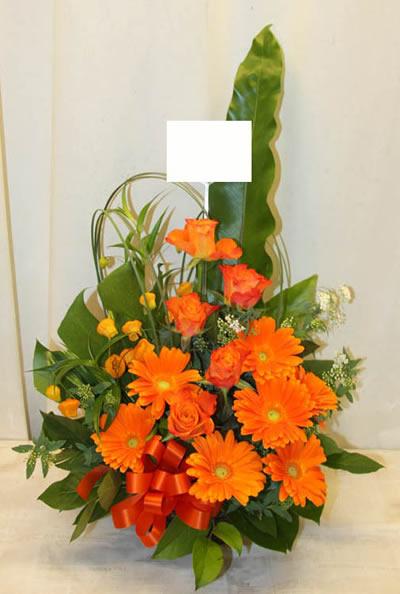 明るく元気なアレンジ(オレンジ系)【花 フラワーギフト アレンジメント フラワー 誕生日】[品番:0274]の画像1枚目