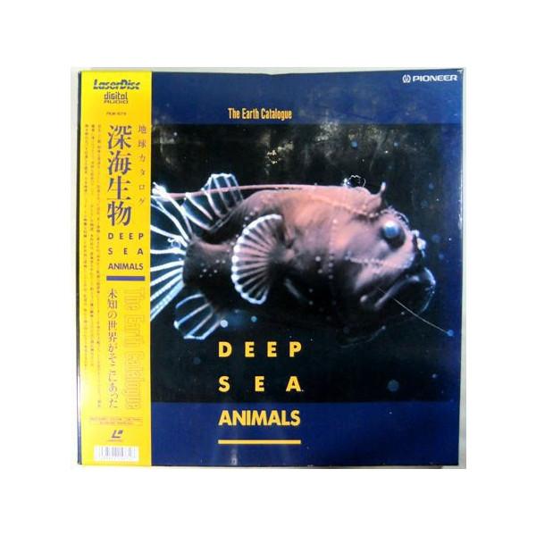 レーザー深海生物 堀出しレコード盤::416【バッグ・小物・ブランド雑貨】記念日向けギフトの通販サイト「バースデープレス」