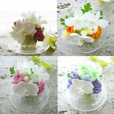 ガラス製のドーム入胡蝶蘭とデンファレの豪華なアレンジ 送料無料