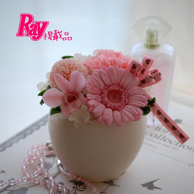 Sweet Pink ガーベラアレンジ[ケース入]プリザーブドフラワー