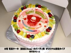 写真ケーキ (8号 24cm) 小パーティ用