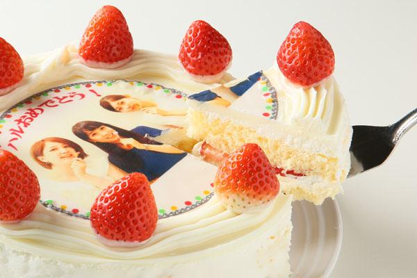 冷蔵発送の苺付き写真ケーキ 5号の画像3枚目