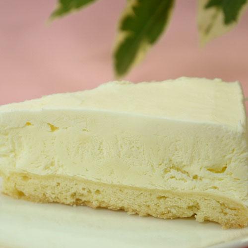 チーズケーキ 【南信州レアチーズケーキ スクエア】 ケーキ スイーツ お取り寄せ ギフト【 お菓子】