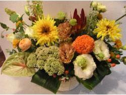 アレンジメントパラレルオレンジ系 M【花 フラワー フラワーギフト 誕生日 プレゼント】