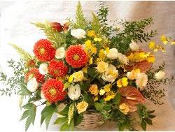アレンジメントパラレルオレンジ系 L【花 フラワー フラワーギフト 誕生日 プレゼント】