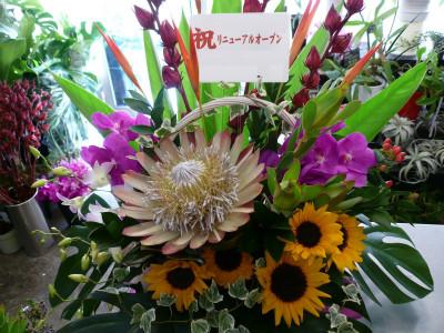 〜congratulation!〜(1.5)【花 フラワー フラワーギフト 誕生日 プレゼント】の画像1枚目