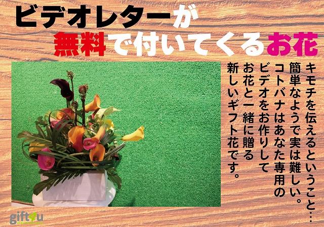 『コトバナ』 モダンアレンジメント 【贈り物 花 ギフト 動画 サプライズ 誕生日 記念日】