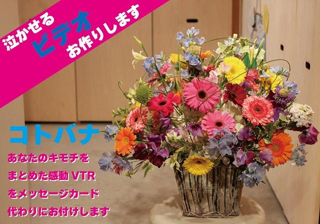 『コトバナ』 ラウンドタイプアレンジメント 【贈り物 花 ギフト 動画 サプライズ 誕生日 記念日】