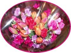 八重チューリップとスイートピーの艶やかお任せ花束