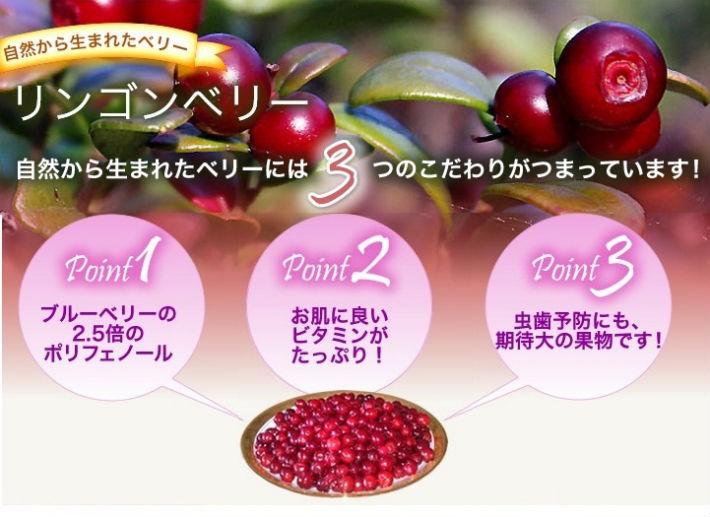 採れたて冷凍果実  ビルベリー&リンゴンベリー6袋セットの画像3枚目