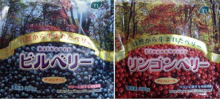 採れたて冷凍果実  ビルベリー&リンゴンベリー6袋セットの画像1枚目