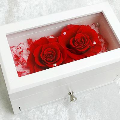アメイジング・グレイス【花 フラワーギフト プレゼント お祝い 誕生日 贈り物 ギフト】