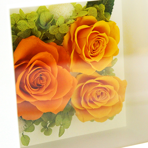 訪れ 橙【プリザーブドフラワー アレンジメント フラワーギフト プレゼント ギフト】の画像5枚目