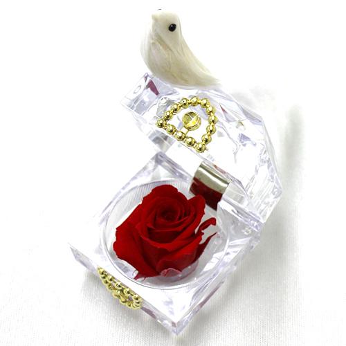 幸運を呼ぶ白い鳥!紅白の組み合わせがおめでたい!レッドバード【プリザーブドフラワー フラワーギフト プレゼント ギフト】