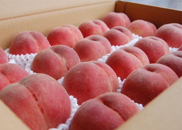 早生桃 特選品 5kg箱(7月上旬以降)【果物 フルーツ もも 誕生日 バースデー ギフト 贈り物 プレゼント お祝い お中元 お歳暮】【食品 > フルーツ・果物】記念日向けギフトの通販サイト「バースデープレス」
