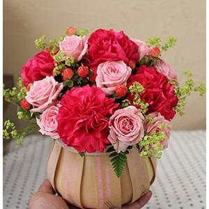 赤とピンクのモコモコアレンジ メントフラワー誕生日に最適!