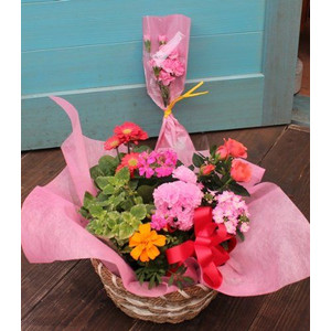 寄せかご(季節のお花でお作りします) Mサイズ